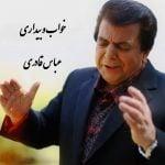 دانلود آهنگ بی کلام خواب و بیداری از عباس قادری
