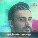 دانلود آهنگ بی کلام شب طولانی ( یلدا ) از علی مولایی